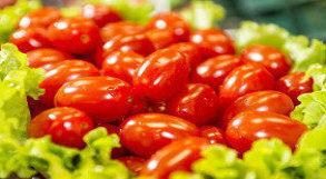 Salada com tomate