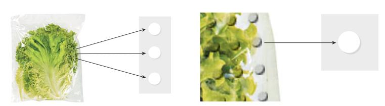 Imagem de alface embalada e setas apontando para círculos brancos.