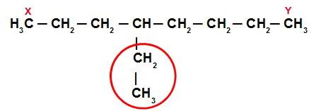 Exemplo de determinação das ramificações de uma cadeia principal