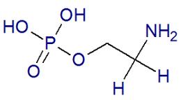 Fórmula estrutural de uma molécula de fosfoetanolamina