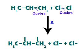 Rompimento das ligações pi e sigma durante a halogenação