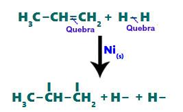 Rompimento das ligações pi e sigma durante a hidrogenação