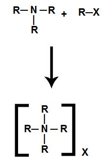 Equação representando a formação de um sal de amônio quaternário