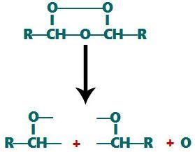 Quebra das ligações entre os oxigênios no ozoneto