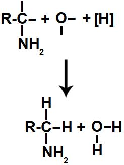 Representação do produto formado na redução orgânica de uma amida
