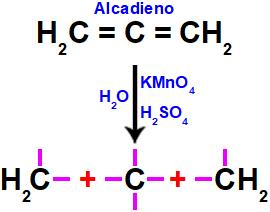 Formação de valências livres no alcadieno após o rompimento de suas ligações.