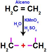 Formação de valências livres no alceno após o rompimento de sua ligação.