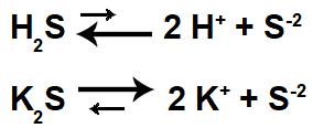 Equações de ionização e de dissociação da solução-tampão ácida.