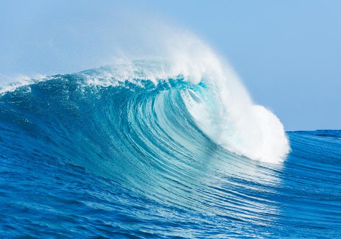 A água do mar apresenta vários sais que contêm halogênios