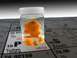 Elemento Fósforo na Tabela Periódica e uma de suas variedades alotrópicas, o fósforo branco guardado em frasco com água
