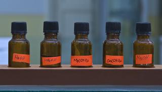 Fileira de frascos de laboratório com diferentes bases inorgânicas