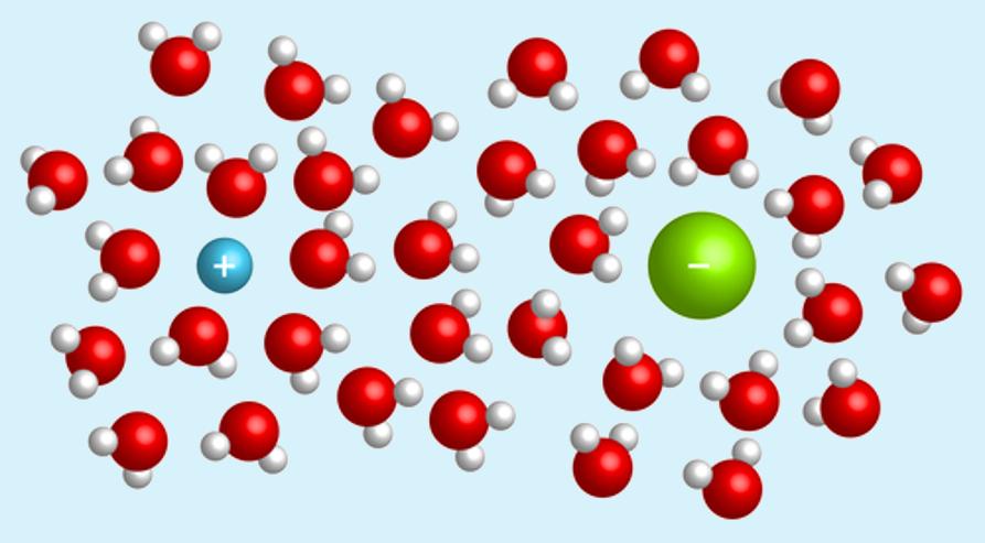 Na solução iônica existem íons que possuem concentrações específicas