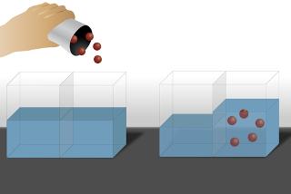 No exemplo acima, há osmose no sentido do solvente para a solução