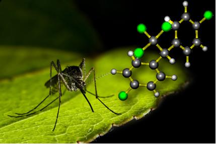 O DDT é um inseticida pertencente ao grupo dos haletos orgânicos