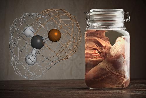 O metanal, que em solução é conhecido como formol, sendo usado como conservante de cadáveres, é o aldeído de maior uso.