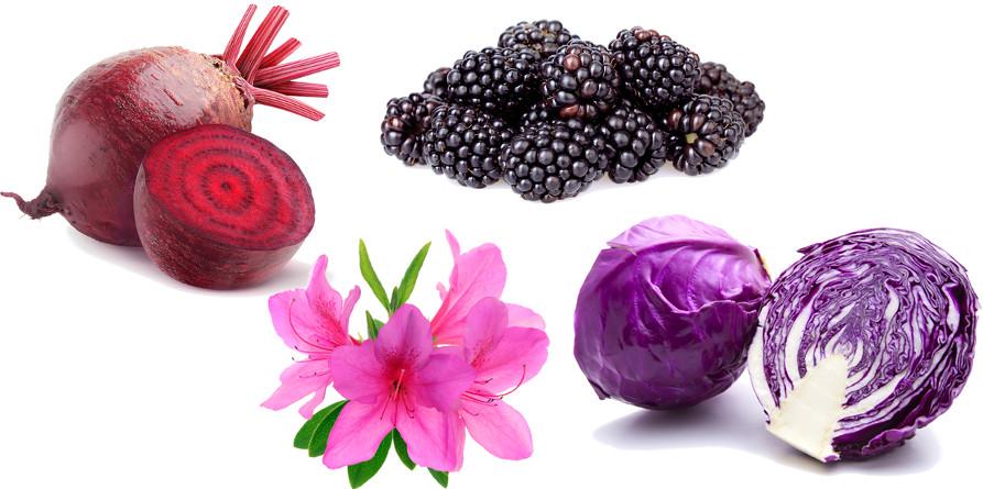Vegetais que contêm antocianina — um indicador ácido-base natural